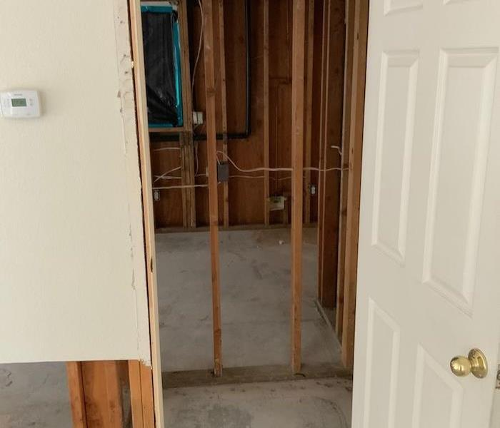 Mold with sheetrock and floor coverings removed down to the framework