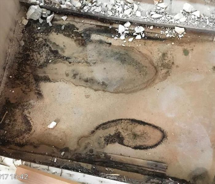 Mold Damage in a Sacramento Home Before